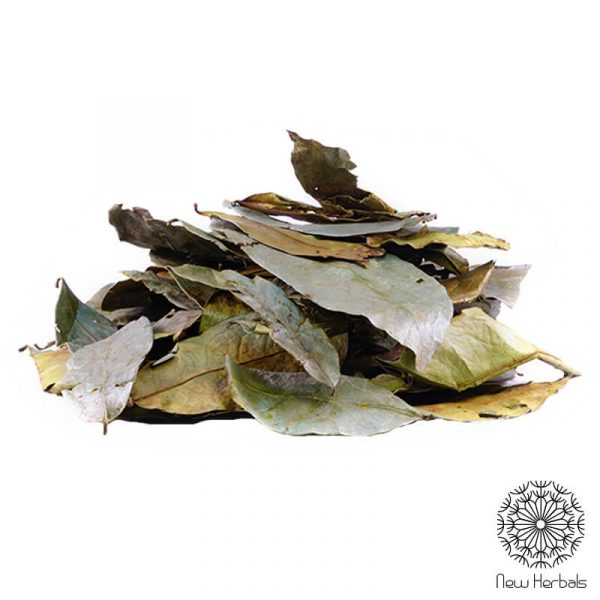 guanabana_leafs