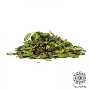 Bobinsana leaf